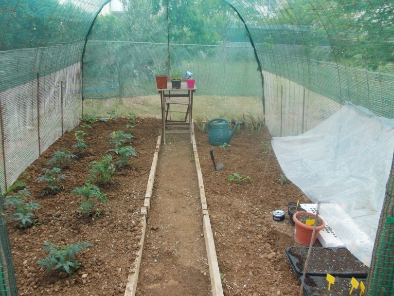 3η θέση διαγωνισμού - Επίμονος Κηπουρός