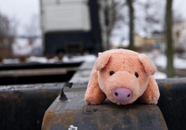 Λιγότερο κρέας = Καλύτερη ζωή (Photo: Flickr/Running-Duck)
