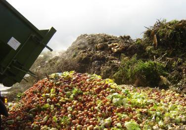 Το συγκλονιστικό κόστος της σπατάλης φαγητού