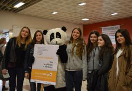 Panda με Μέσα (Photo: Συγκοινωνίες Αθηνών/Παύλος Δριμάλας)